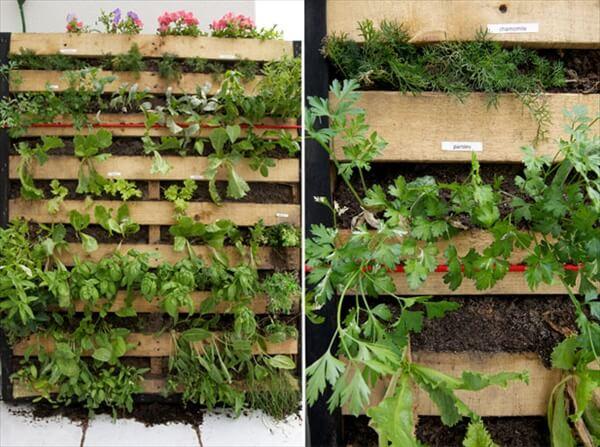 pallet-vertical-garden-7