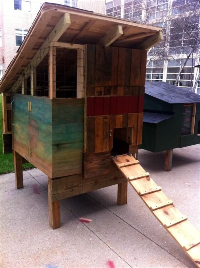Pallet chicken coop out of recycled pallets pallet for Pallet chicken coup