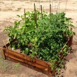 Enjoy the Creativity with Pallet Garden Bed