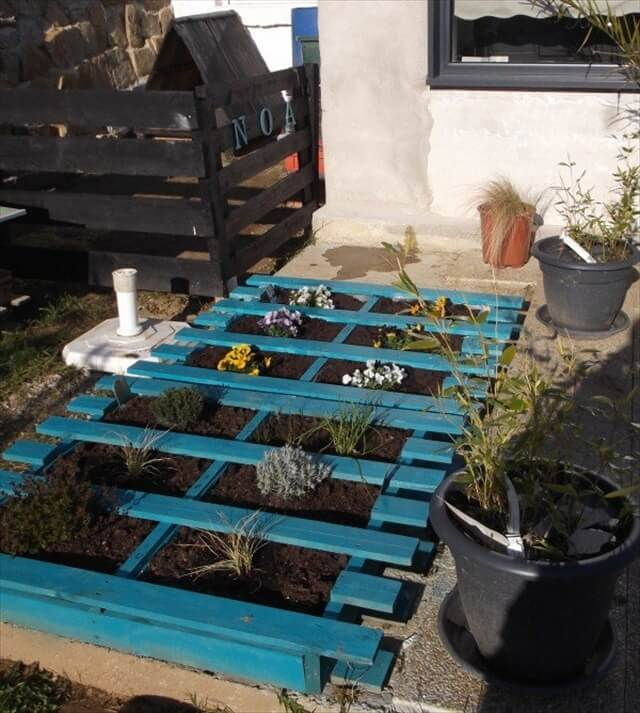 Blue Pallet Planter for Lawn