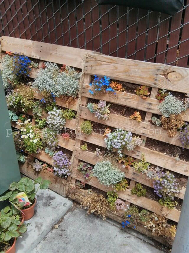 25 Vertical And Box Recycled Pallet Planters