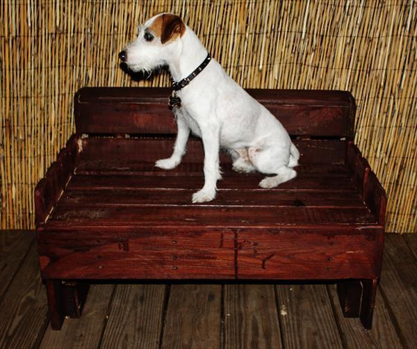repurposed pallet dog bed