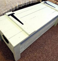 recycled pallet trunk and coffee table