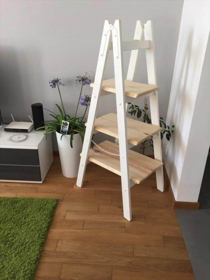 Diy Pallet Ladder Shelf Pallet Furniture Diy