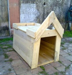 building the chevron roof of the doghouse