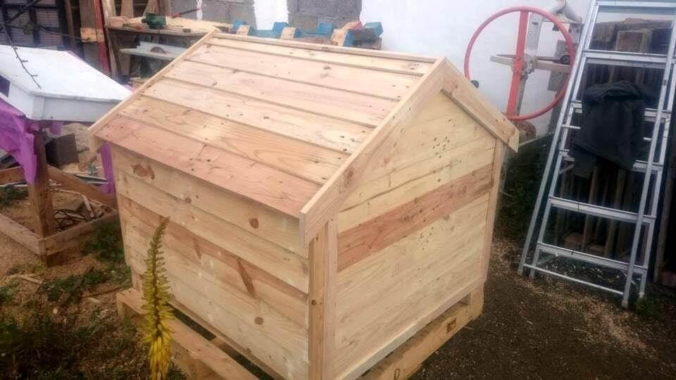 Wooden pallet dog house