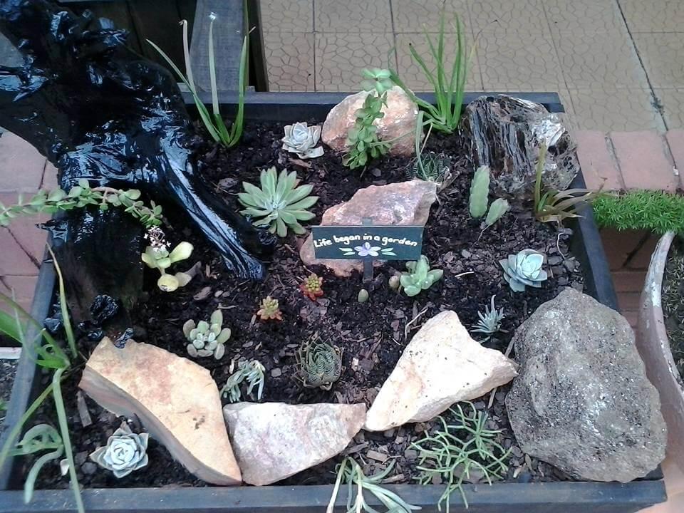 diy pallet succulent planter