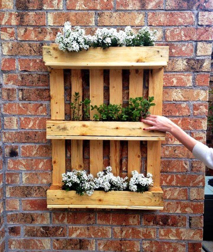wall hanging pallet flower or herb garden