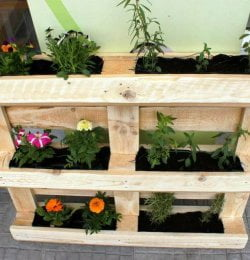 recycled pallet vertical planter