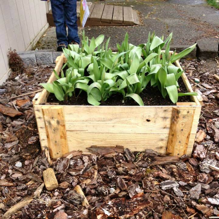 reclaimed wooden pallet planter