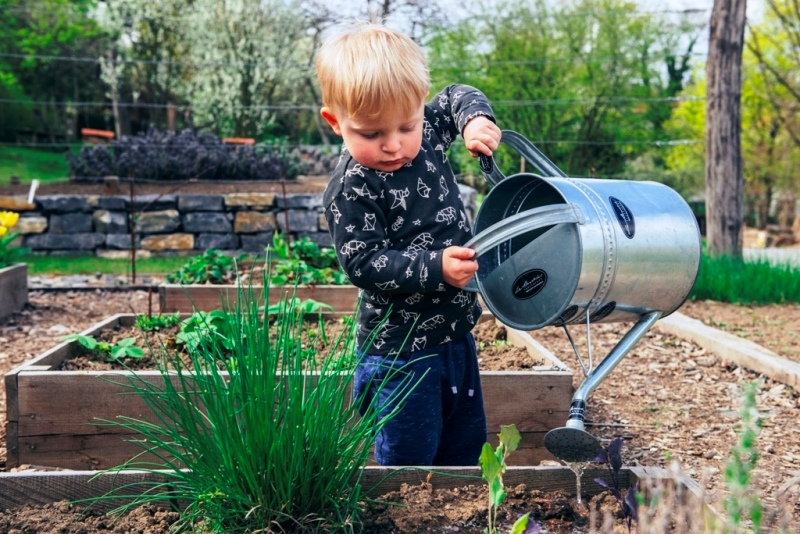Learn The Gardening With These Useful Tips