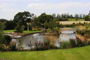 Understanding the Different Types of Gardens